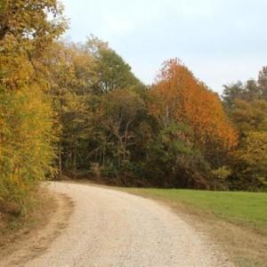 Sentiero degli asfodeli - Ecomuseo delle Rocche