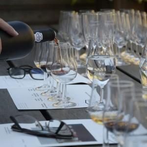 wine-tasting-1324261_1920