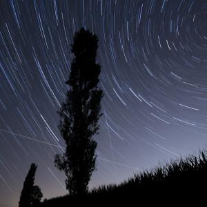 Foto Cantù Notturni