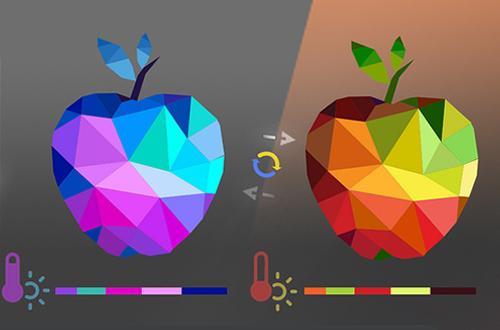 grafica-vettoriale-image
